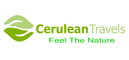 Cerulean Travels